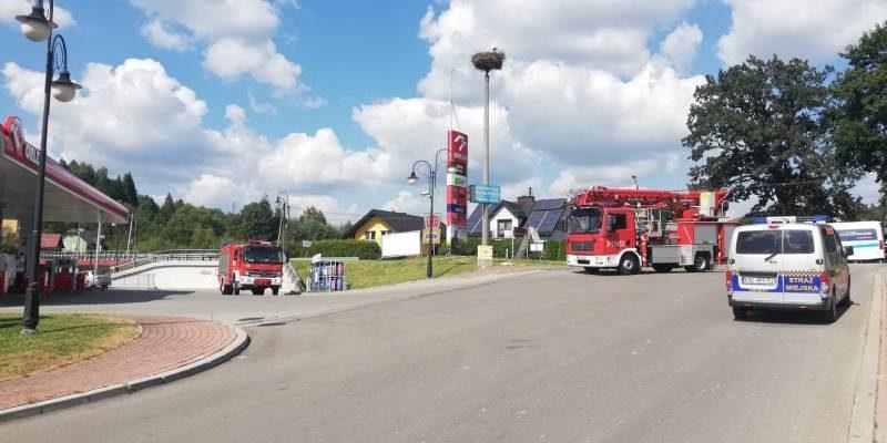 Strażacy pomogli młodemu bocianowi - fot. KMPSP Nowy Sącz