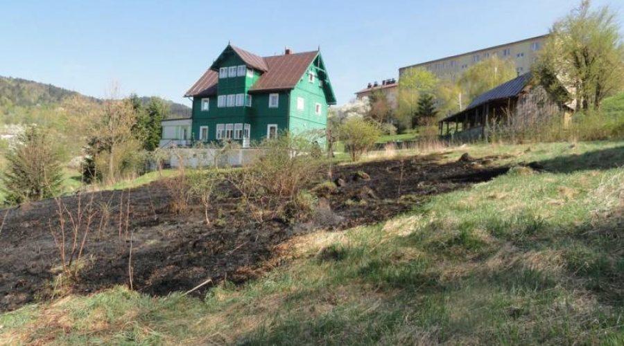 Krynica-Zdrój: Pożar trawy na ul. Źródlanej