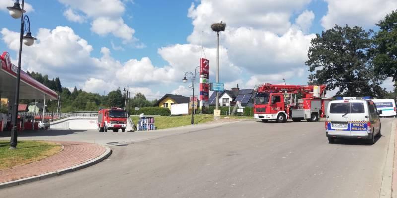 Krynica-Zdrój. Strażacy pomogli młodemu bocianowi
